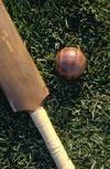 Bat_ball
